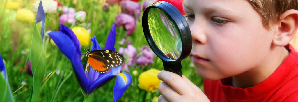Nifty Nature Explorers | Wednesdays at 10:30 a.m. through July 26